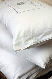Silk Pillow Standard and Lodge (King)
